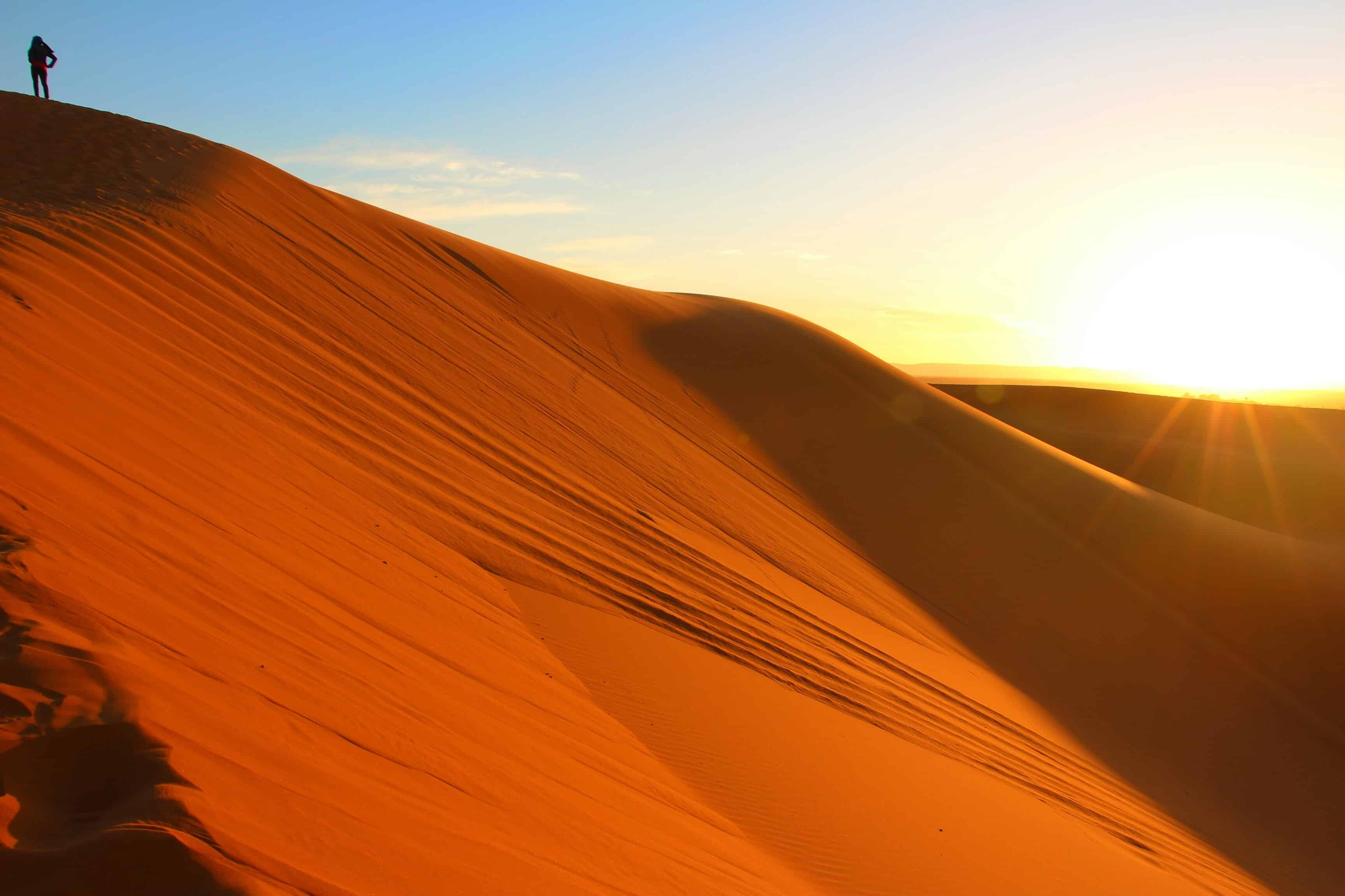 Experience the isolation and beauty of the Sahara Desert on your tour.